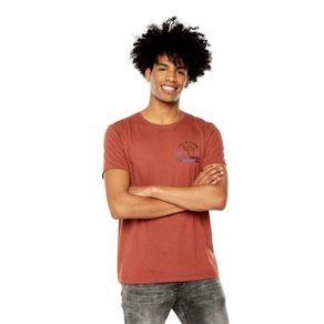 Camiseta-para-Hombre-Estampada-Mozart-1-terreo-arabian-spice