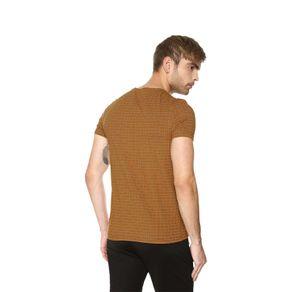 T-shirt-para-hombre-berilo-terreo